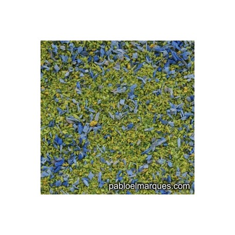 MP-117 meadow blend: spring green with blue flowers