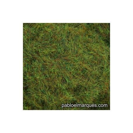 C-423 static grass: green