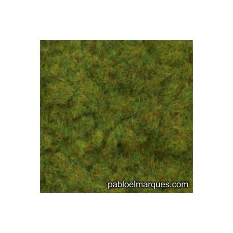 C-220 césped electrostático verano verde rojizo