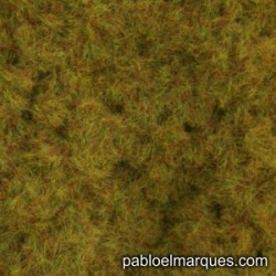 C-215 static grass: orange olive green