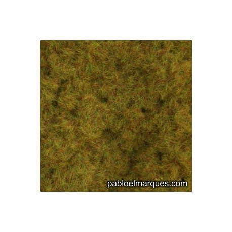 C-215 static grass: orange olive green