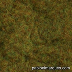 C-221 static grass: red green orange
