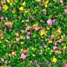 J-05 flores rosas y amarillas