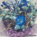 Flowers Blue / Violet
